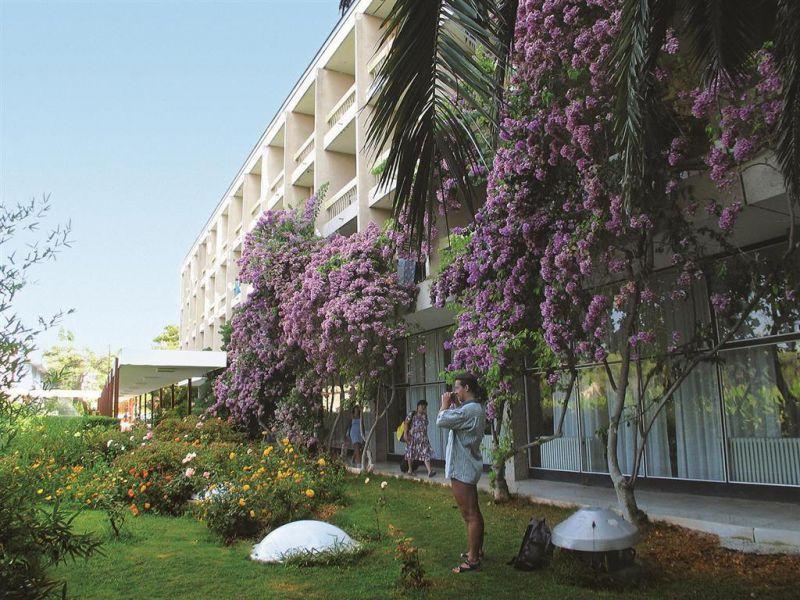 Basko Polje-Hotel/Depadance Alem 2*